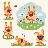 Vector set funny bunny rabbit in different poses on summer meadow with flowers