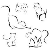 cat abstract lines on a white background vector