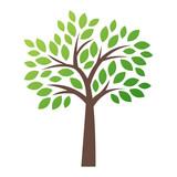 Fototapety Stylized vector tree logo icon