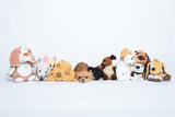 Small sad russet dogs in a row of toys