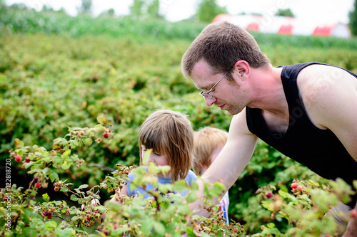 Poster Man picking berries with children
