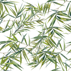 Watercolor illustration of bamboo leaves , seamless pattern on white background © photoiget