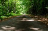 walk trail simsbury