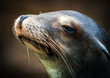 Silly Sea Lion with big whiskers makes a funny face