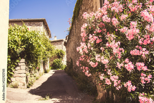 Medieval Village in Provence, Southern France with Beautiful Flower Display