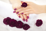 vinous manicure with rose flowers. spa