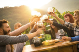 Fototapety Happy friends having fun outdoors - Young people enjoying harvest time together at farmhouse vineyard countryside - Youth and friendship concept - Focus on hands toasting wine glasses with sun flare