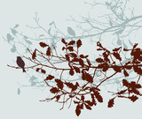oak branches in the autumn