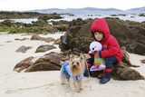 little kid in the beach with his dog and a seal of toy in winter