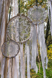 Dream Catchers on the branch of a tree and fabric strips