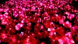 Christmas decorative artificial red flowers with glowing bulbs