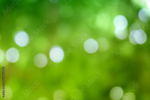 Bokeh color tone moss, Abstract natural  background. Poster