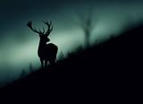 Silhouette di un cervo nel bosco