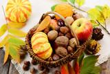 Herbst Kürbis Nüsse Gemüse