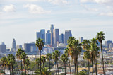 Fototapety Los Angeles skyline with palm trees in the foreground