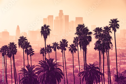 Wall mural Los Angeles skyline with palm trees in the foreground