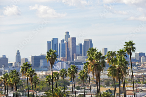 Los Angeles skyline with palm trees in the foreground Poster
