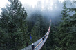 Capilano suspension bridge Vancouver, British Columbia Canada. Suspension bridge on a foggy and misty day. Bridge in the forest surrounded by nature.