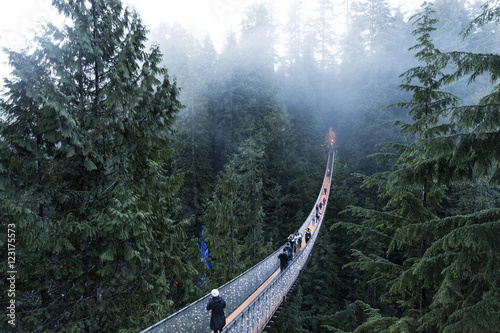 Foto op Plexiglas Canada Capilano suspension bridge Vancouver, British Columbia Canada. Suspension bridge on a foggy and misty day. Bridge in the forest surrounded by nature.