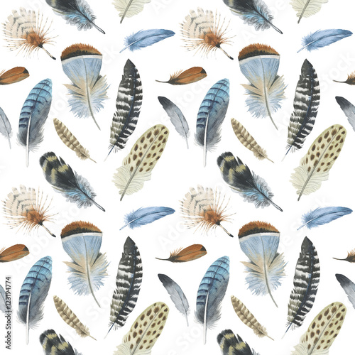 Watercolor bird feather pattern from wing isolated. Aquarelle wild flower could be used for background, texture, wrapper pattern, frame or border. - 123194774