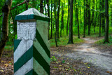 Photo of an old boundary post in a green forest