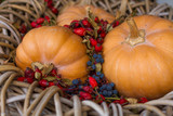 pumpkins and red wild rose hips