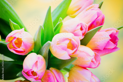 Fototapety, obrazy : Spring flowers. Tulip bouquet on the bokeh background.