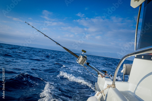 The fishing-rod equipped with the coil Poster