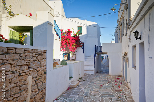 Typical houses of Folegandros village.