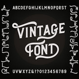 Vintage alphabet font with alternates. Letters, numbers and symbols. Retro vector typography for your design. - 123306553