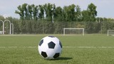 Soccer ball rolls on a grass and stands on a field