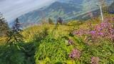 Landschaft Kitzbühel, Austria