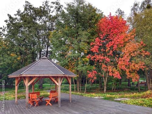 Jesień w Parku Centralnym w Olsztynie