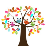 Vector set of colorful owls and birds sitting on the oak tree on a white background