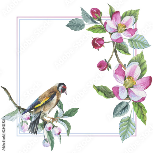 Wildflower apple flower frame in a watercolor style isolated. Aquarelle wild flower for background, texture, wrapper pattern, frame or border. © yanushkov