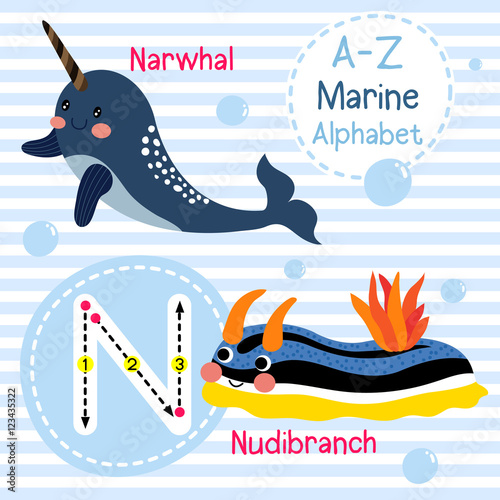 Image of: Letter Letter Tracing Narwhal Nudibranch Cute Children Sea Marine Alphabet Flash Card Ap Images Letter Tracing Narwhal Nudibranch Cute Children Sea Marine
