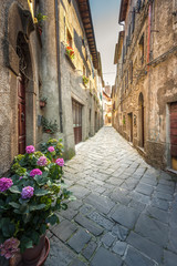 The streets of an unknown town in Tuscany, Castel del Piano, Ita