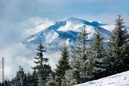 Fototapeta Nice winter landscape