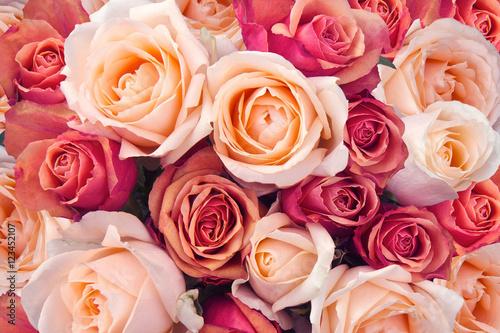 Leinwanddruck Bild Roses as a background