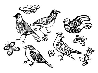 Decorative birds. Set birds. Vector illustration. Hand drawn bird for your design.