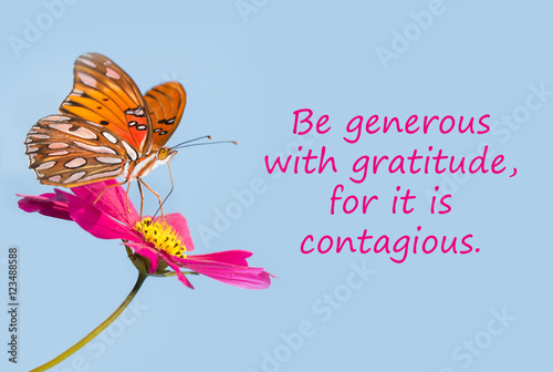 Butterfly on a pink flower with a quote - Be generous with gratitude, for it is contagious Photo by pimmimemom