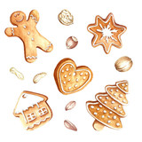 Set of gingerbread and nuts.Christmas.Hand draw watercolor illustration. - 123506102