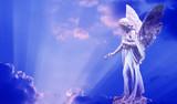 Beautiful angel in heaven - 123511949