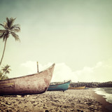 tropical background - 123516943