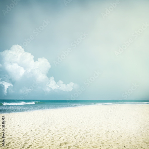 tropical background - 123516955