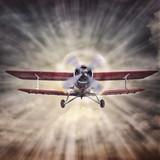 biplane against the sun - 123517179