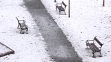 Park snow falling / Heavy snow falling over benches in city park while wind blows dry leaves