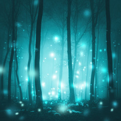Magical foggy forest trees with artistic fireflies light background. Magic cyan blue colored fairytale woodland. © robsonphoto