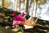 Two origami cranes in the Nature