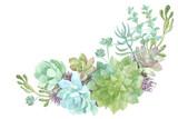 watercolor flowers succulents - 123653777